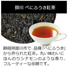 掛川べにふうき紅茶